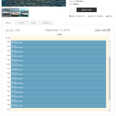 Booking details calendar by day