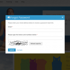 Magento 2 Customer Forgot Password Popup